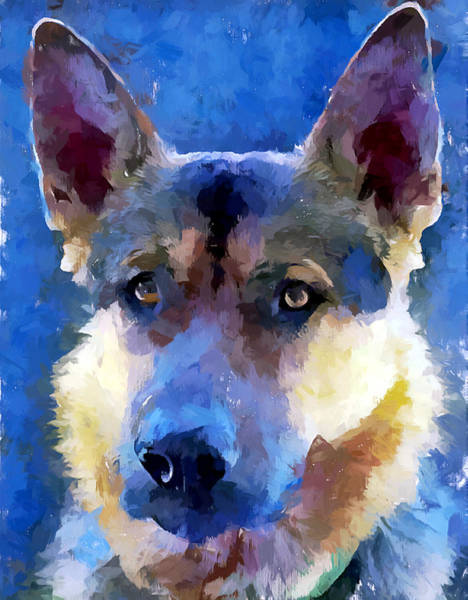 Wall Art - Painting - German Shepherd 9 by Chris Butler