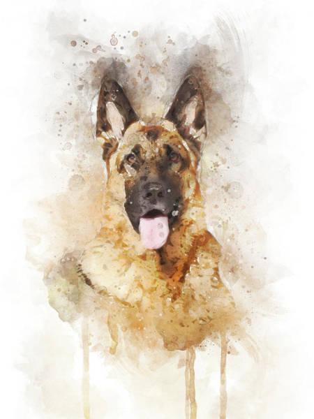 Wall Art - Digital Art - German Shepherd by Aged Pixel