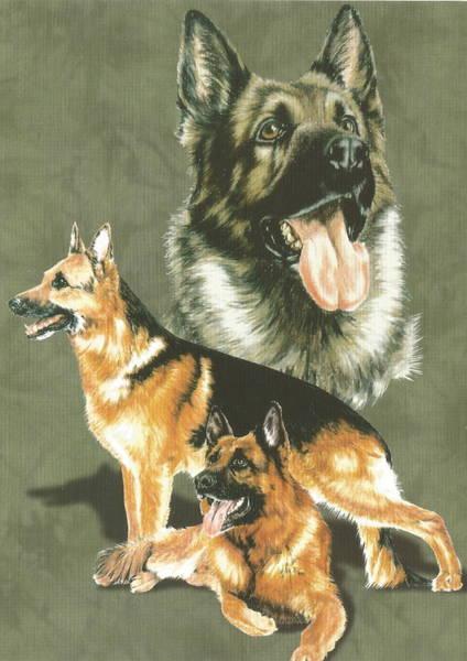 Drawing - German Shepherd Alteration by Barbara Keith
