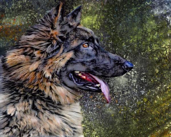 Wall Art - Digital Art - German Shepherd Portrait by Scott Wallace Digital Designs