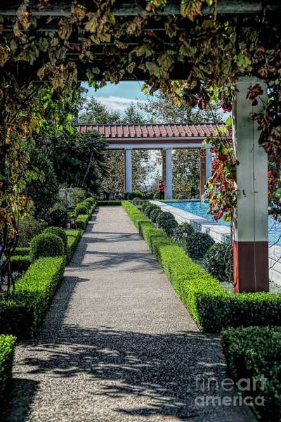 Wall Art - Photograph - Getty Villa Pathway California  by Chuck Kuhn