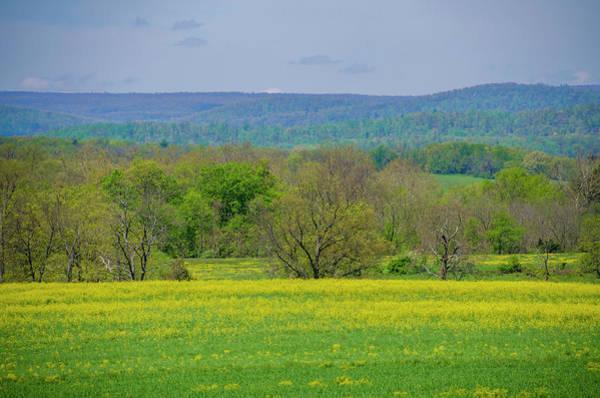 Wall Art - Photograph - Gettysburg Pennsylvania - Yellow Flowers In Field by Bill Cannon
