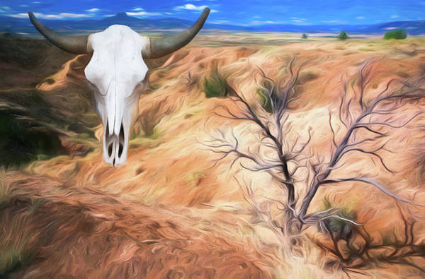 Wall Art - Photograph - Ghost Ranch  by Art Cole