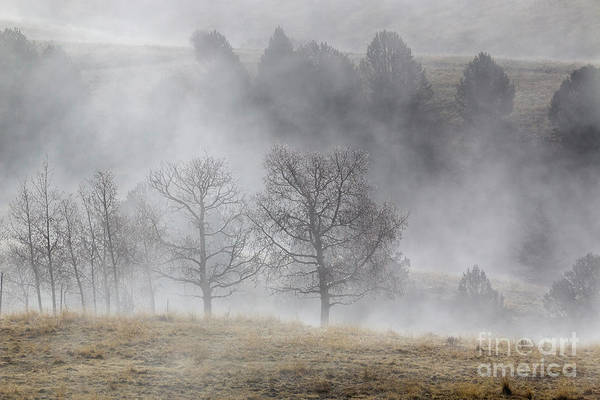 Photograph - Ghostly Figures In Foggy Mine Country by Steve Krull