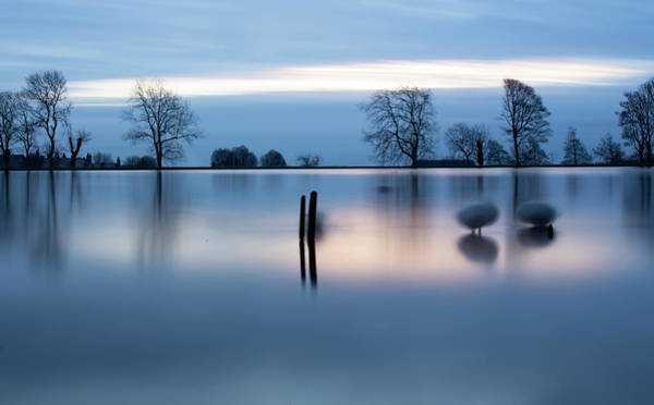 Bluehour Photograph - Ghostly Geese  by Daniel McNamara