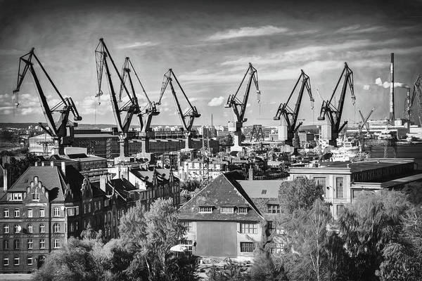 Wall Art - Photograph - Giant Cranes Of Gdansk Shipyard Poland Black And White by Carol Japp