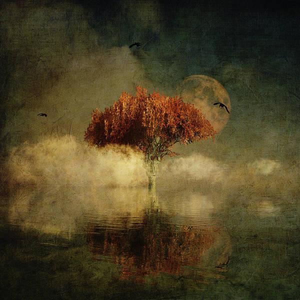 Digital Art - Giant Oak In A Dream by Jan Keteleer