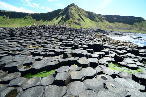Wall Art - Photograph - Giants Causeway - Northern Ireland by Gigi Peis