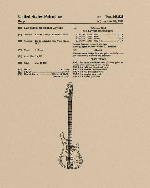 Strat Photograph - Gibson Victory Guitar by Tim Palmer