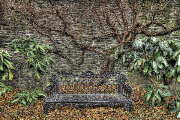 Photograph - Gifford's Bench by Dawn J Benko
