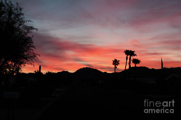 Wall Art - Photograph - Gila Mountain Sunrise  by Robert Bales