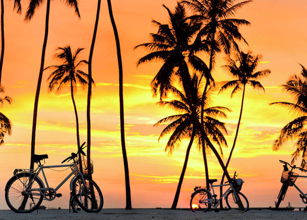 Photograph - Gili Bikes by Sean Davey