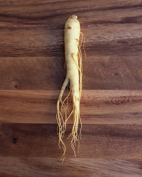 Teapot Photograph - Ginseng Root by Jessica Boone