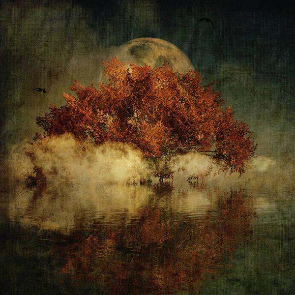 Digital Art - Giant Oak And Full Moon by Jan Keteleer