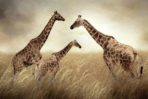 Wall Art - Mixed Media - Giraffe Family by Lori Deiter