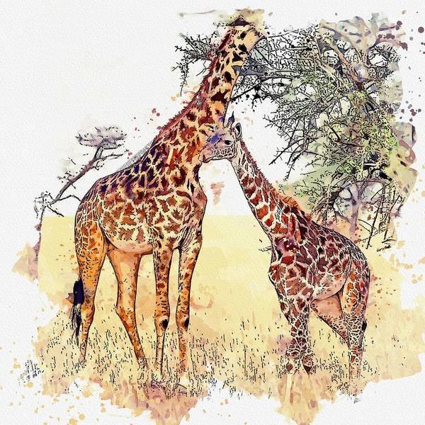 Painting - Giraffe Mother -  Watercolor By Ahmet Asar by Ahmet Asar