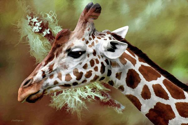 Painting - Giraffe Profile - Painting by Ericamaxine Price