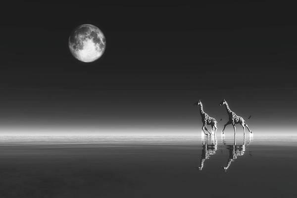 Digital Art - Giraffes by Jan Keteleer