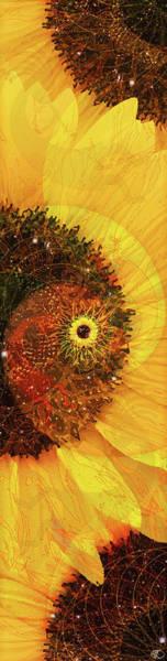 Digital Art - Girasole by Kenneth Armand Johnson