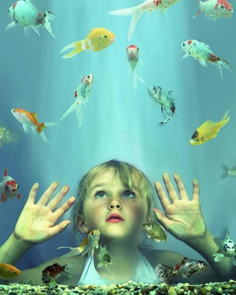 Fish Tank Photograph - Girl 4-6 Looking At Fish In Tank, Hands by Gandee Vasan
