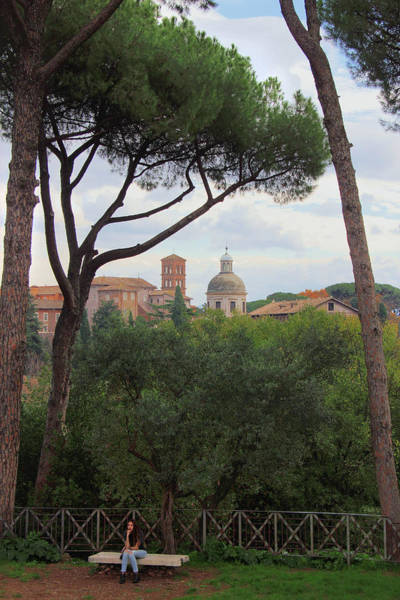 Photograph - Girl Sitting On A Bench Beneath Umbrella Pines On Palatine Hill Rome Italy by Angela Rath