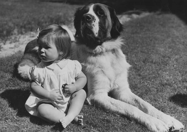 2 Photograph - Girls Best Friend by Fred Morley
