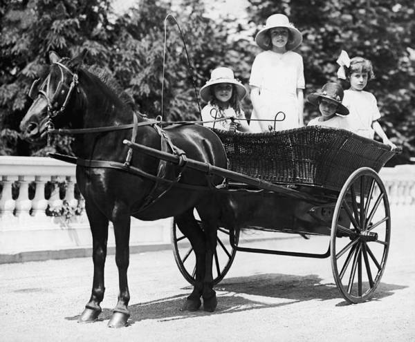 Girl And Horse Photograph - Girls Travelling In Horse Drawn by Fpg
