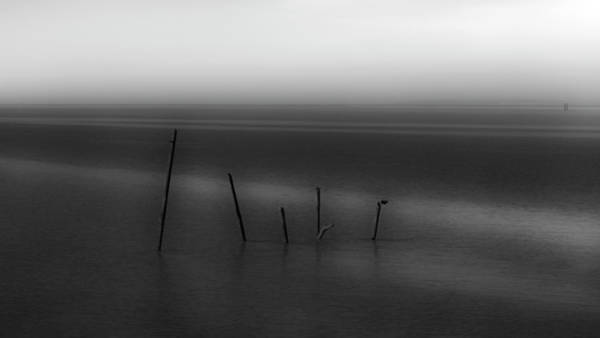 Photograph - Gironde by Jorg Becker