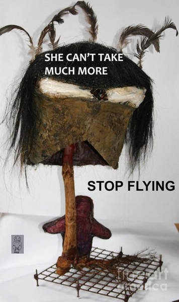 Mixed Media - Give Flying A Miss by Siobhan Dempsey