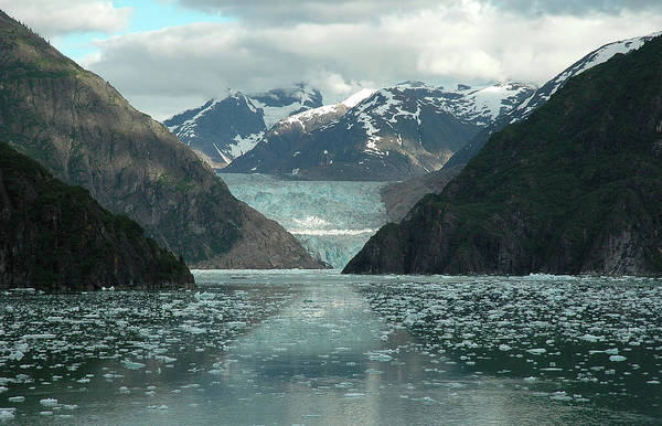 Juneau Photograph - Glacier Approaches - Tracy Arm Fjord by Peter Mulligan