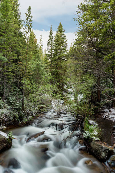 Photograph - Glacier Creek by David Morefield