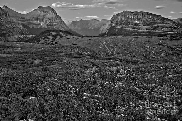 Wall Art - Photograph - Glacier Landscape Of Color Black And White by Adam Jewell