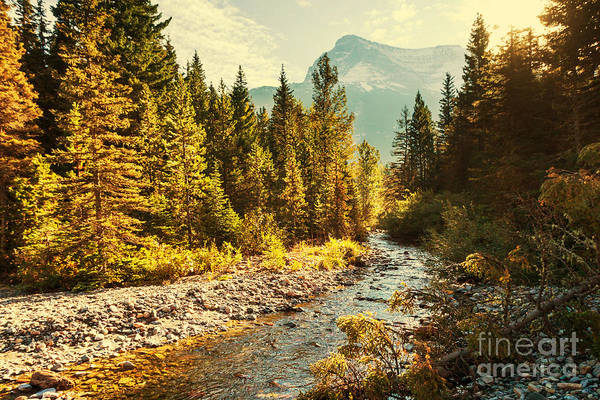 Glacier National Park, Montana Art Print