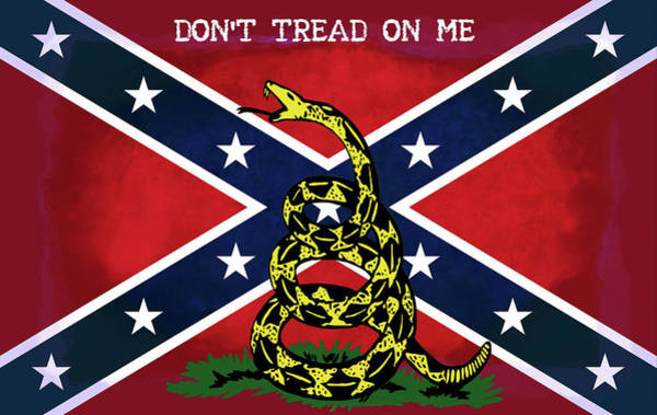 Us Civil War Digital Art - Gadsden Confederate Flag by Daniel Hagerman