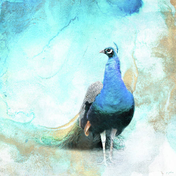 Photograph - Glamorous Peacock by Jai Johnson