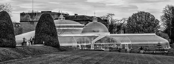 Wall Art - Photograph - Glasgow - Botanic Gardins In Black And White by Bill Cannon