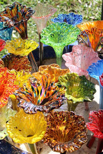 Wall Art - Photograph - Glass Flowers by Gayle Miller