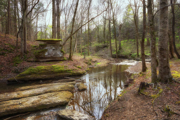 Photograph - Glenrock Branch On The Natchez Trace by Susan Rissi Tregoning