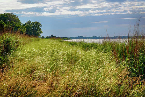 Wall Art - Photograph - Glistening Blades Of Grass by Brian Wallace