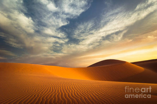 Wall Art - Photograph - Global Warming Concept. Lonely Sand by Perfect Lazybones