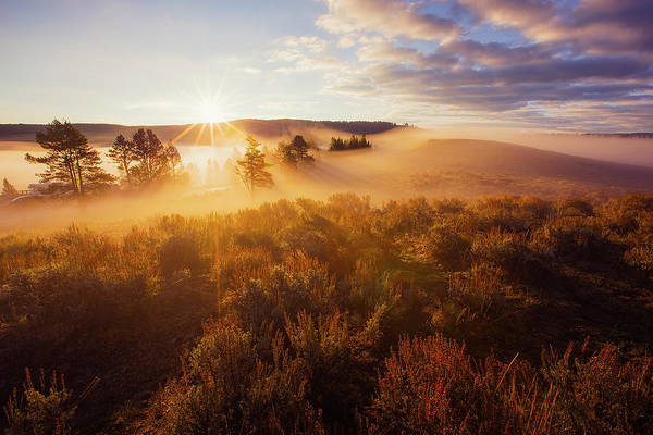 Wall Art - Photograph - Glorious Morning, Yellowstone by Vincent James