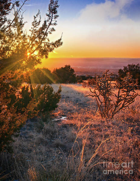 Photograph - Glorious New Mexico Sunset by Susan Warren