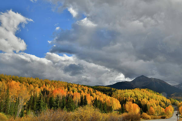 Photograph - Glowing Aspens In The Shadow Of Sunshine Mountain by Ray Mathis