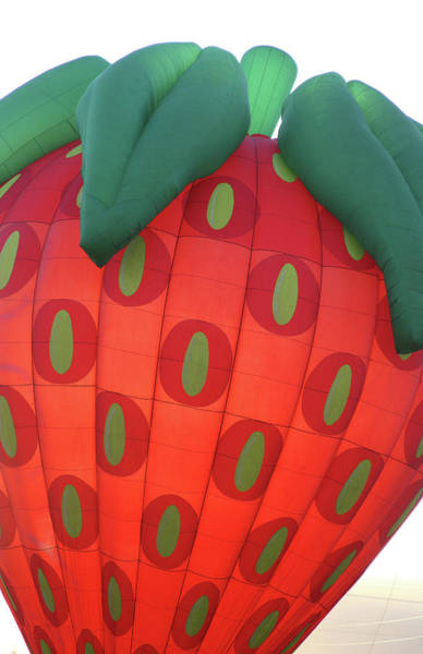 Photograph - Glowing Strawberry by Marie Leslie