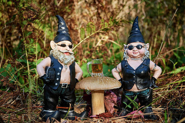 Wall Art - Photograph - Gnomes In The Forest by Paul Freidlund