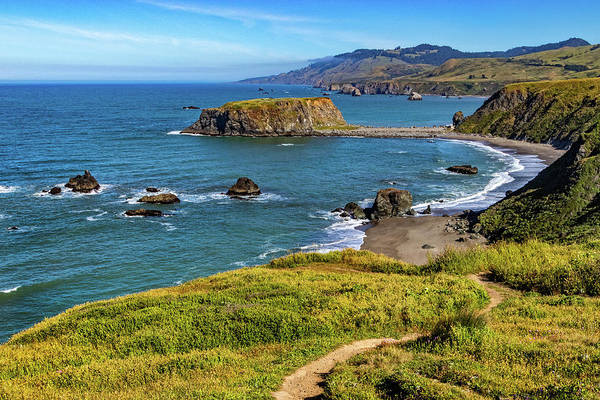 Photograph - Goat Rock On The Sonoma Coast by Carolyn Derstine