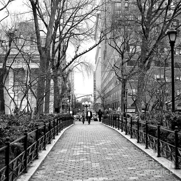 Photograph - Going For A Walk At Union Square Park In New York City Square by John Rizzuto
