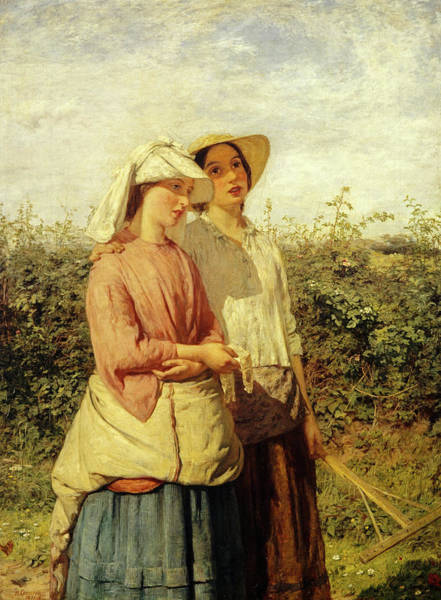 Wall Art - Painting - Going To The Hay by Hugh Cameron