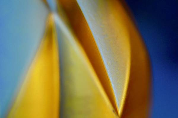 Wall Art - Photograph - Gold And Blue by Greg Hayhoe