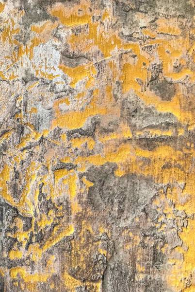 Painting - Gold And Steel Acrylic Textured Abstract by Sheila Wenzel